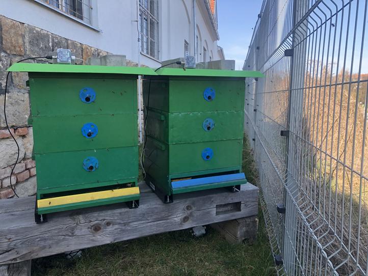 Včelí úly v Centru robotiky (ilustrační foto)